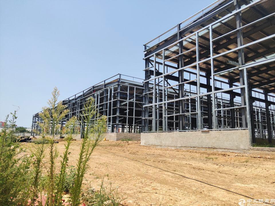 10年回本项目,钢构自用全新厂房出售