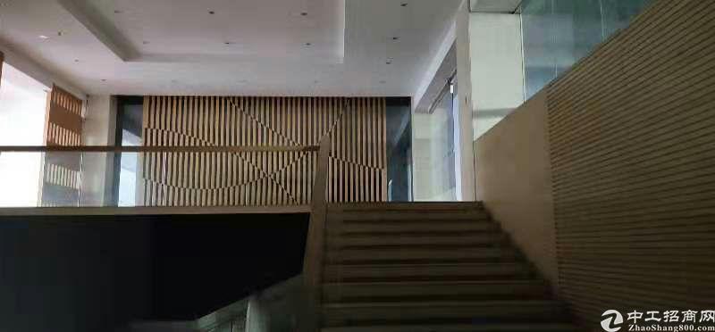 长安镇新出独院厂房出租13800平方-图2