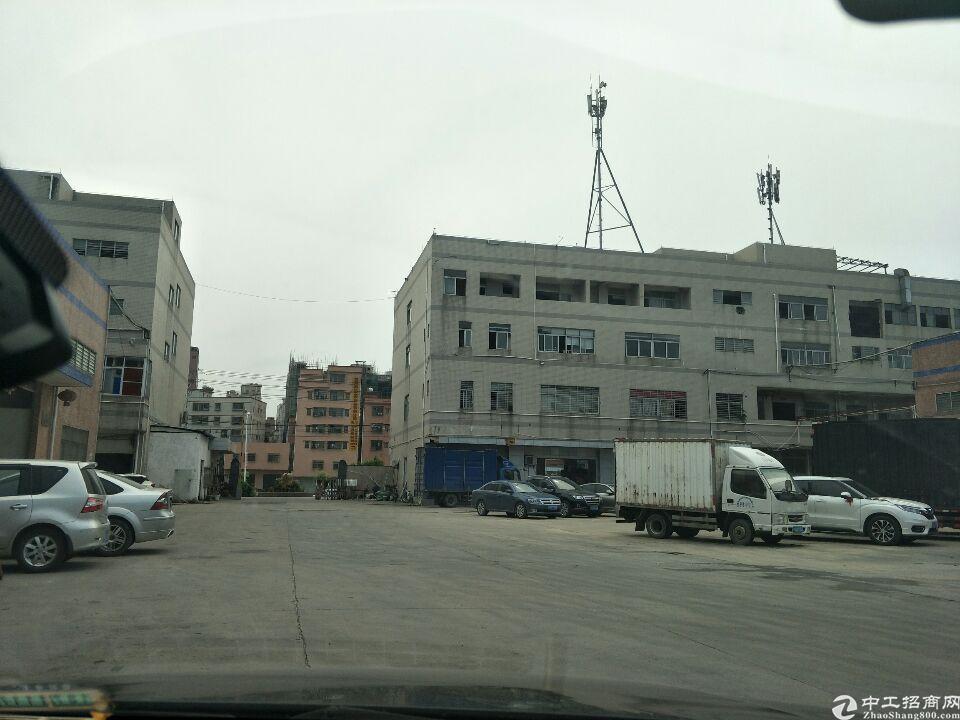 大岭山标准厂房3700平方厂房招租
