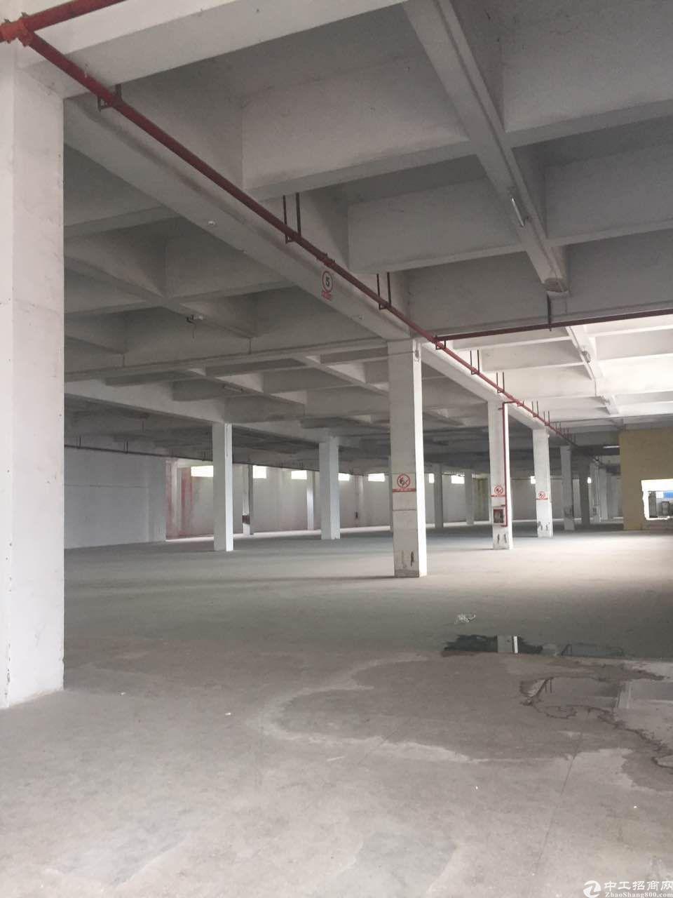 横岗水官高速出口仓库8000平方米招租