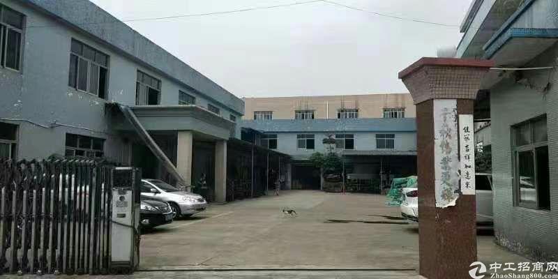 大岭山单一层钢构厂房3100平方厂房招租