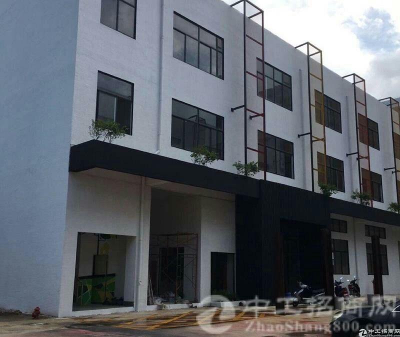 惠州博罗县园洲镇永久使用权出售,标准厂房 形象超级好!