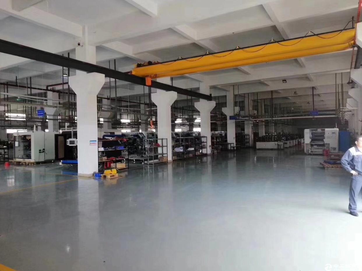 新出原房东标准独院一楼7米高厂房1600平方。