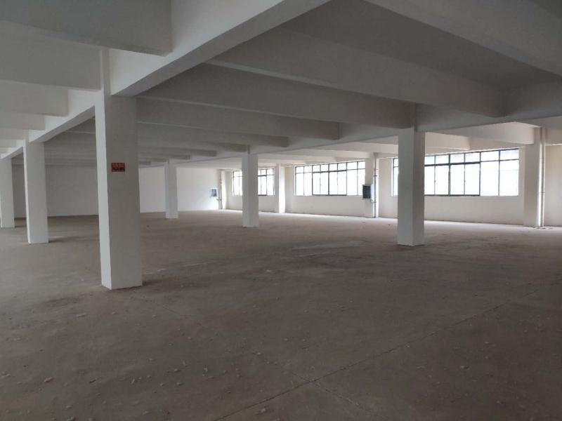 新洲阳逻独栋厂房1400平米出售,独门独院可定制