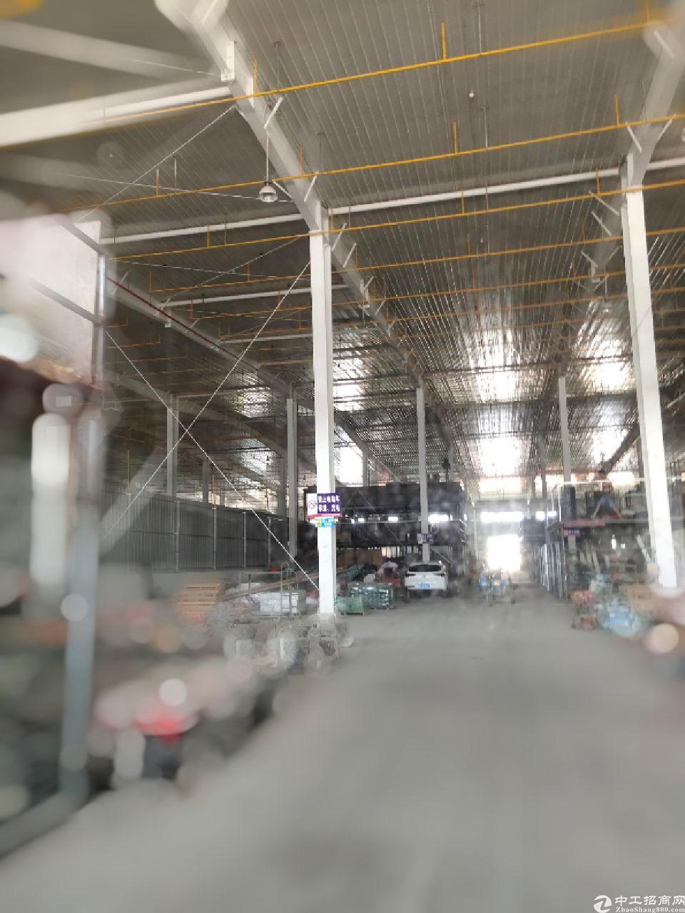 黄陂新出单一层钢构2300平方,单一层11.8米
