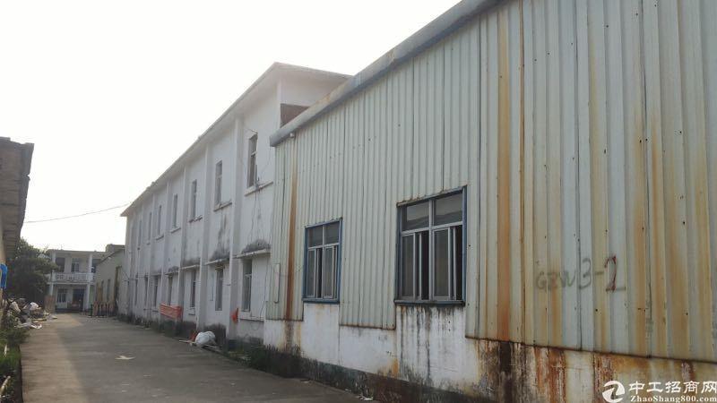 惠阳淡水镇中心钢结构仓库分租400平方。