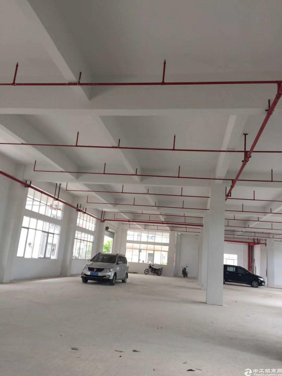 惠州市惠阳区原房东标准厂房5000平出租可分租