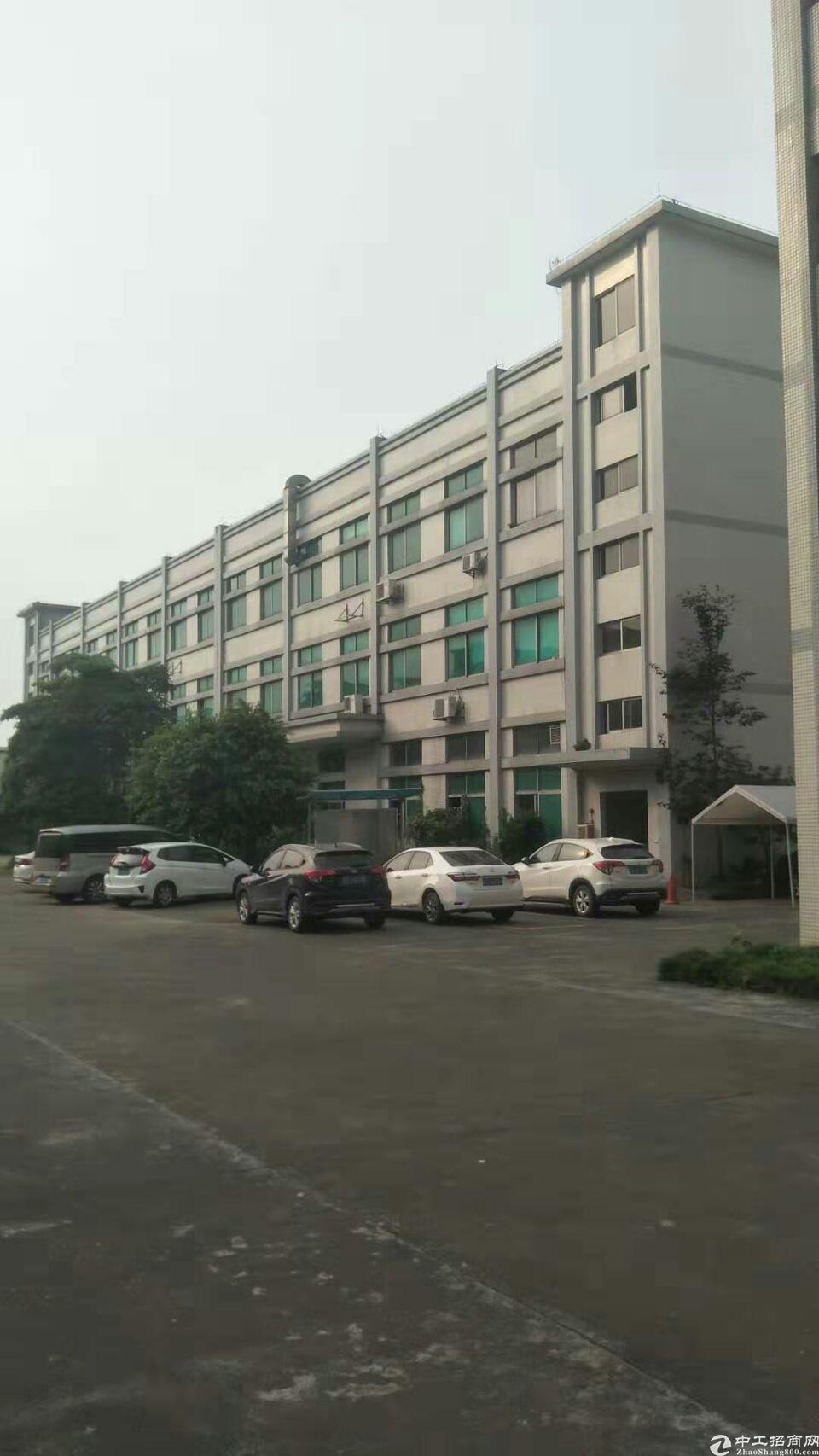 企石镇原房东独院标准厂房分租1-3层3000平方