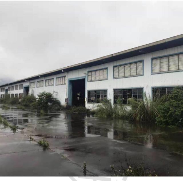 惠州市泰美镇占地31667m²单一层国有证厂房出售