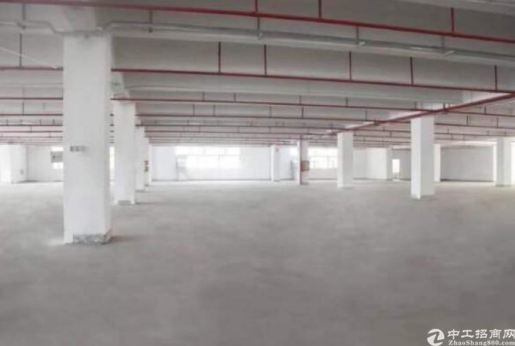 标准厂房三楼2200方,可办环评