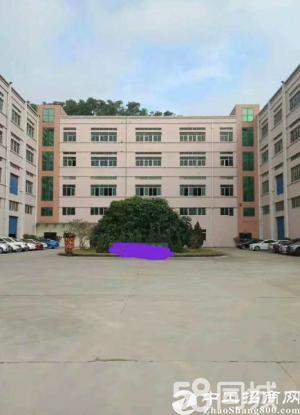 塘厦横塘工业园原房东直租标准2楼1700平方!宽敞明亮无公摊