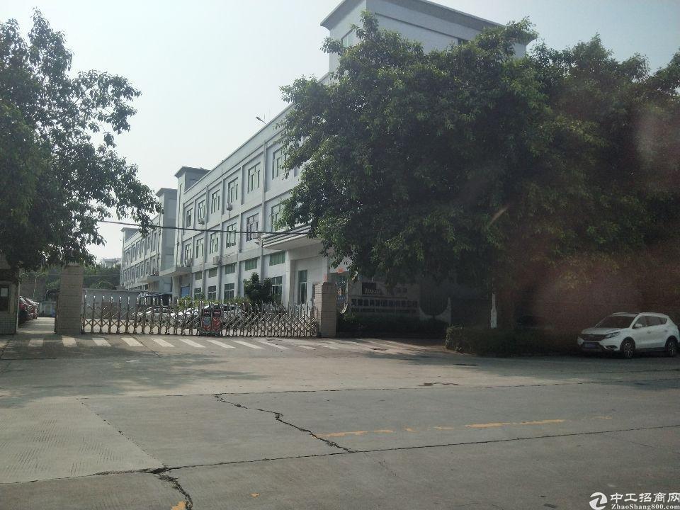 长安乌沙大润发附近新出1楼2500平米标准厂房