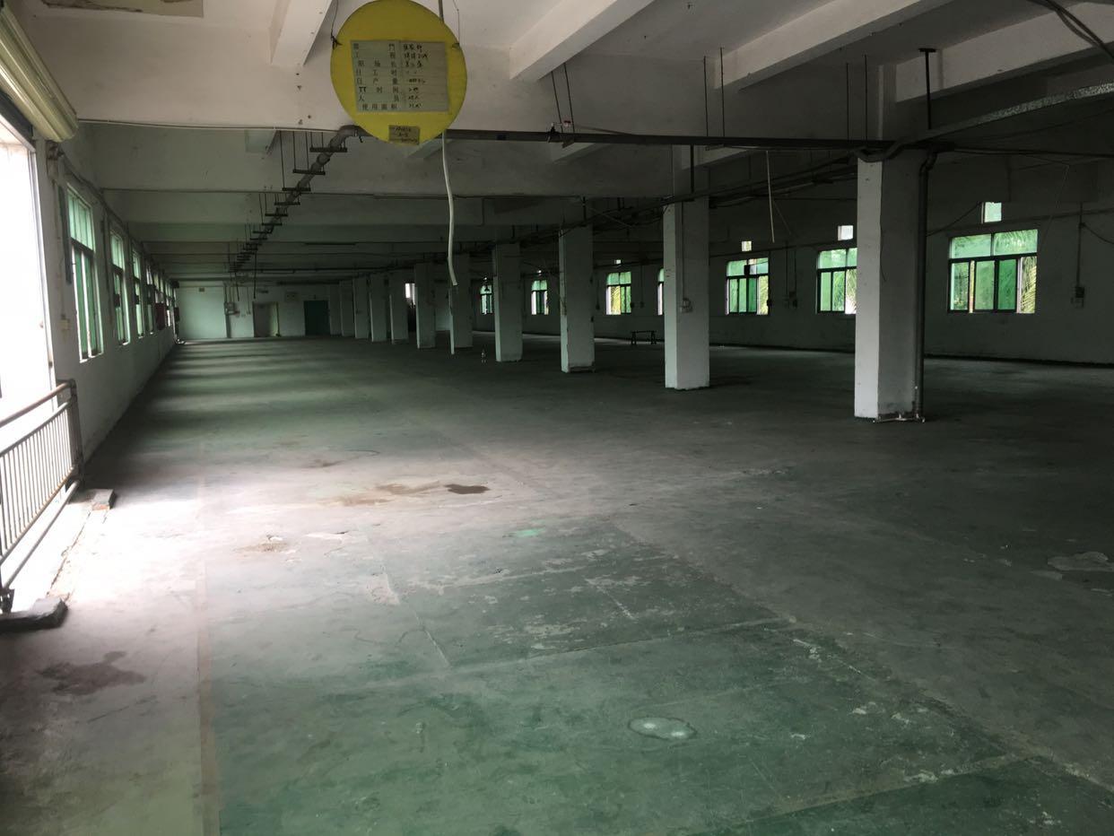 横沥镇新出标准厂房一楼1700平方长90米低价招租