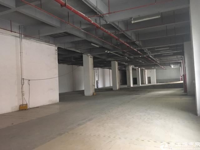 长安沙头新出一楼2000平米标准厂房
