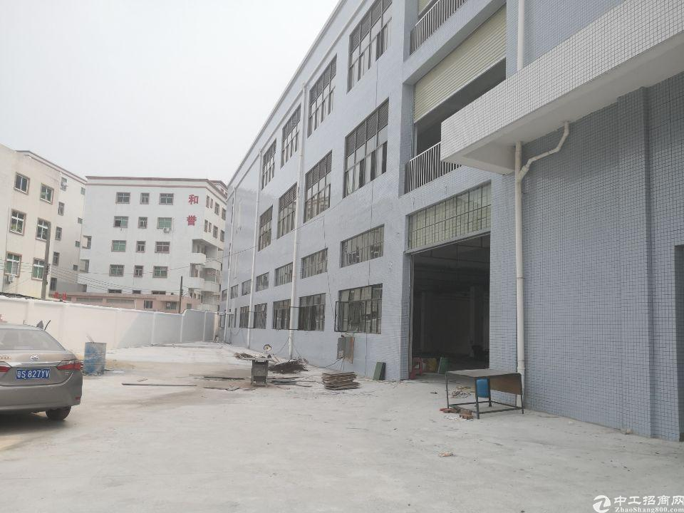 茶山镇全新标准独院厂房2988平方招租