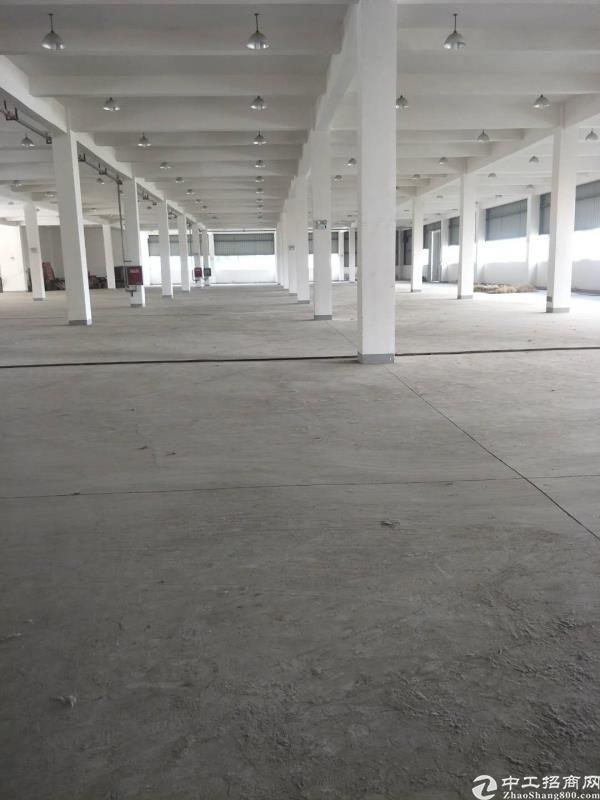 龙泉经开区6000平米场地出租带办公区域-图2
