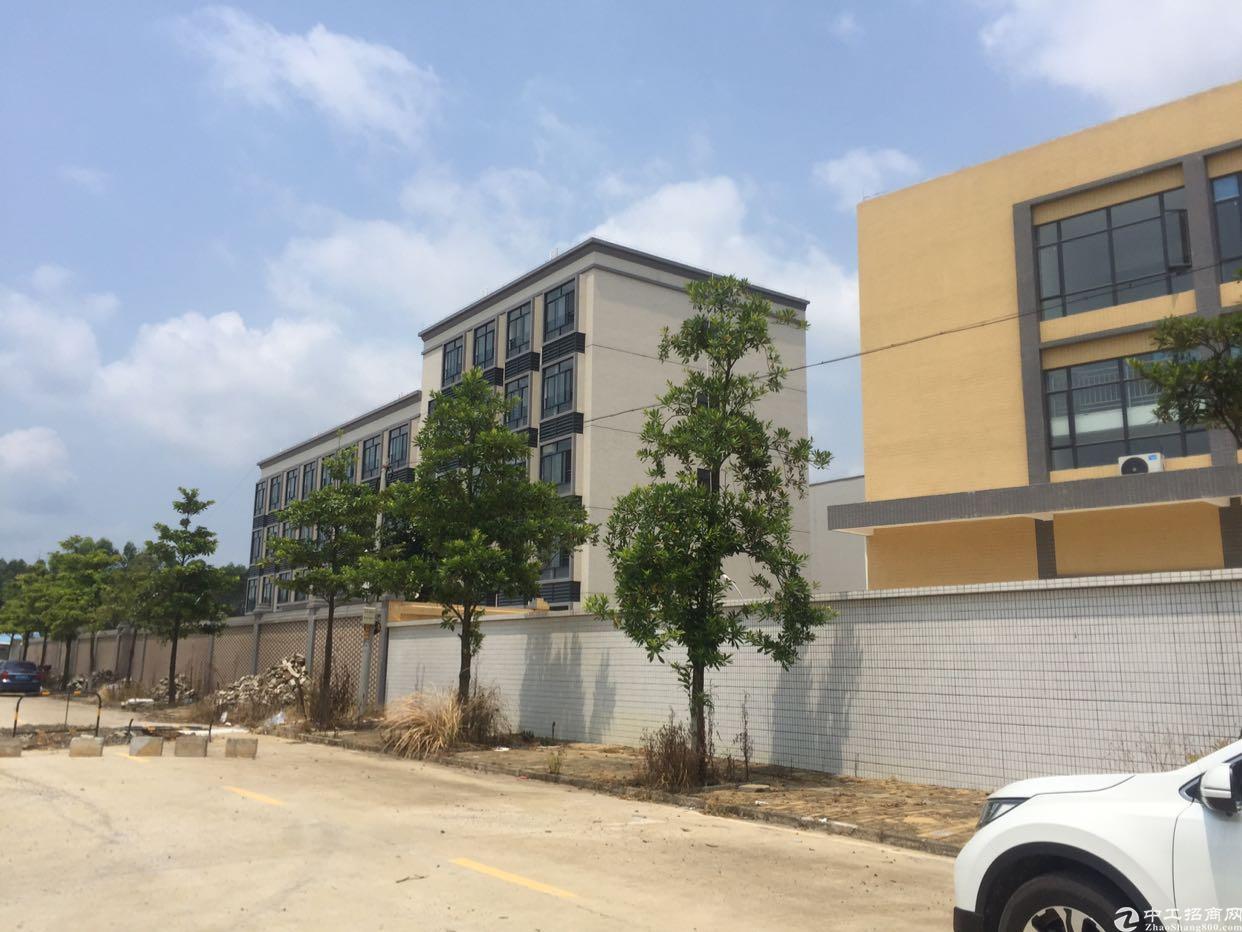 广东省江门市占地45亩国有证厂房、才卖3000多万