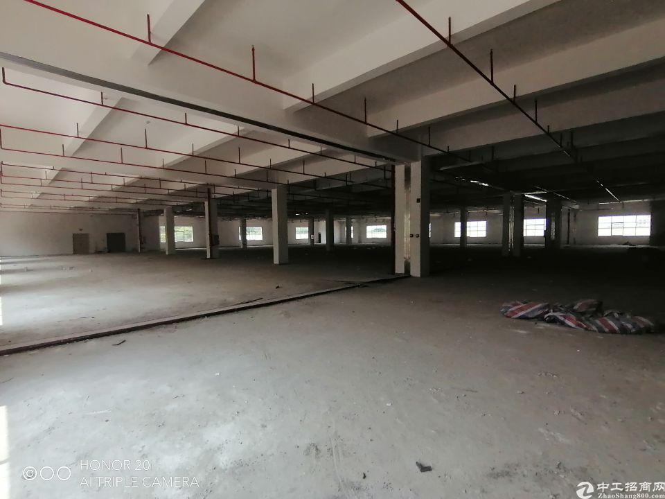 惠州市惠阳区镇隆高速口2公里标准厂房出租