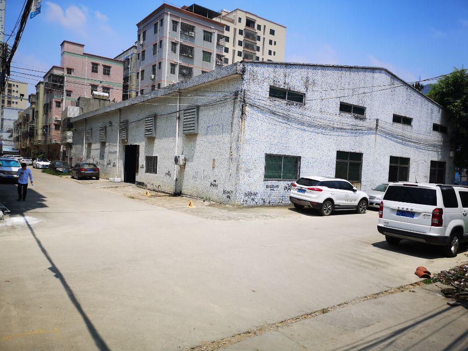 新圩镇独栋钢构980出租