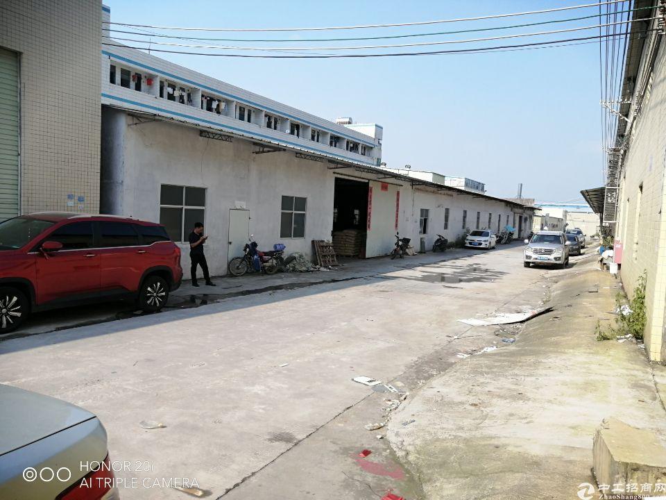 镇隆镇原房东钢构厂房出租1300平方