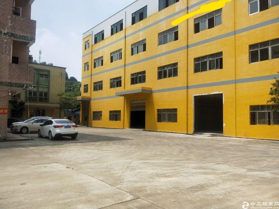 清溪上元高速出口新出标准厂房一楼带牛角600平方出租
