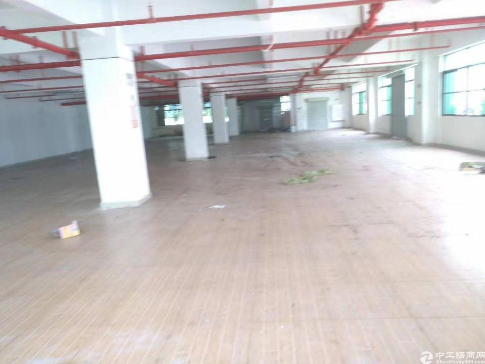 马安镇新乐三路科技园一楼1700平方出租