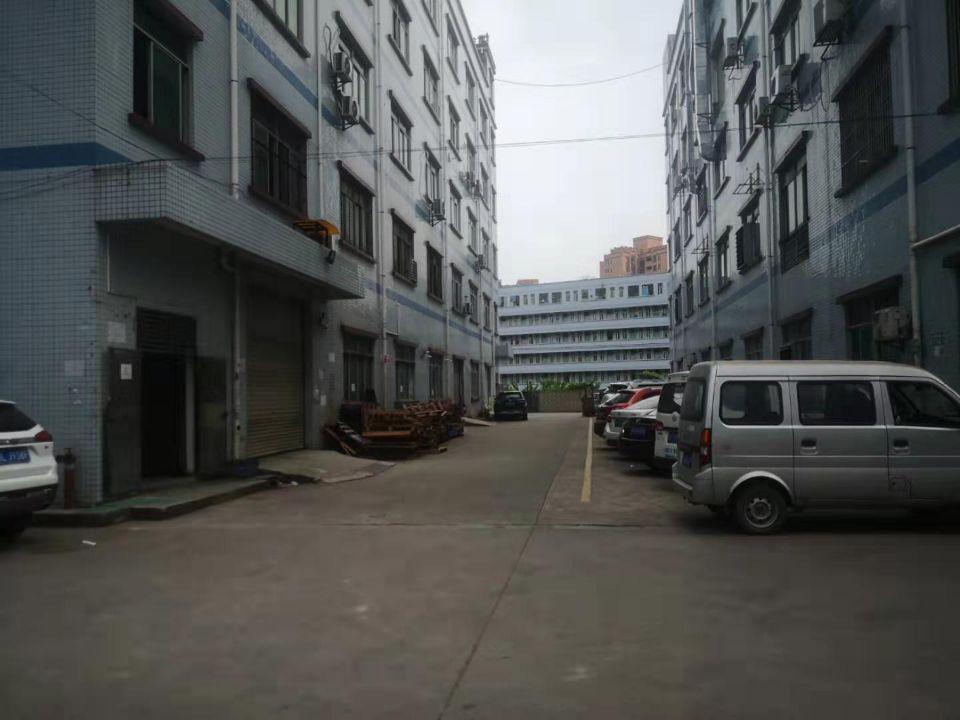 凤岗五联新出带办公室装修、地坪漆、消防喷淋厂房4楼500平