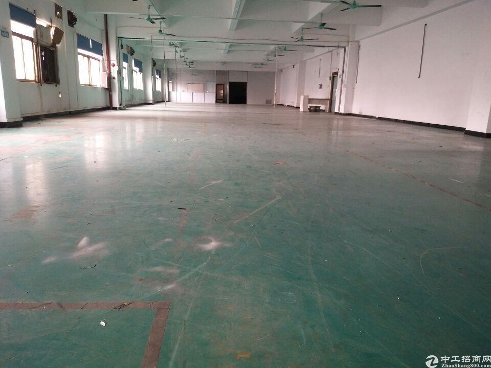 长安镇新出独院厂房出租13800平方-图4