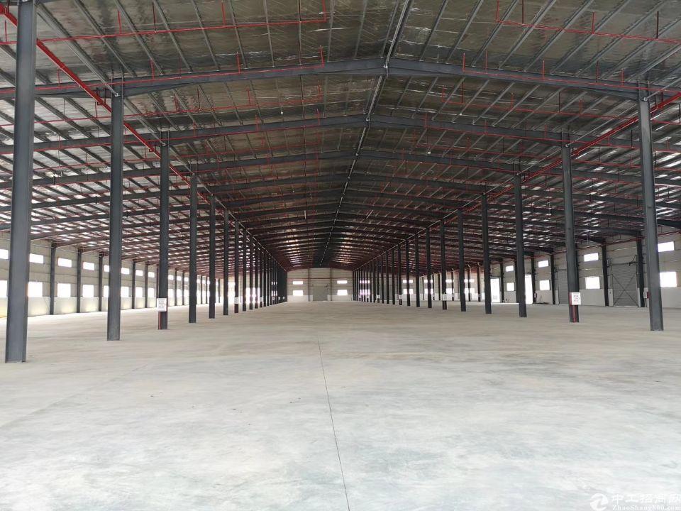 全新标准物流仓库16000平方带现成高台(可分租)