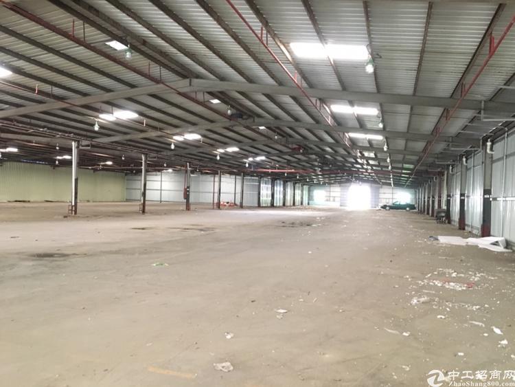 大鹏葵涌钢构物流仓库出租,8000平米可以分租