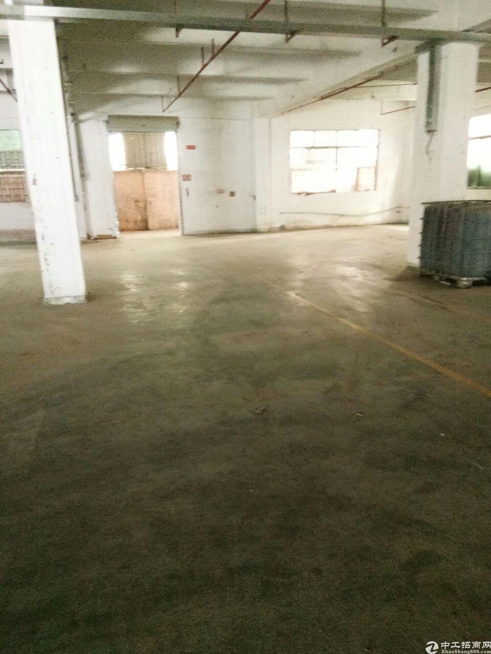 温塘新出标准一楼厂房1300平方