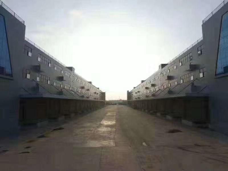 白云区石井江村原房东独门独院标准一楼2000平方标准厂房仓库
