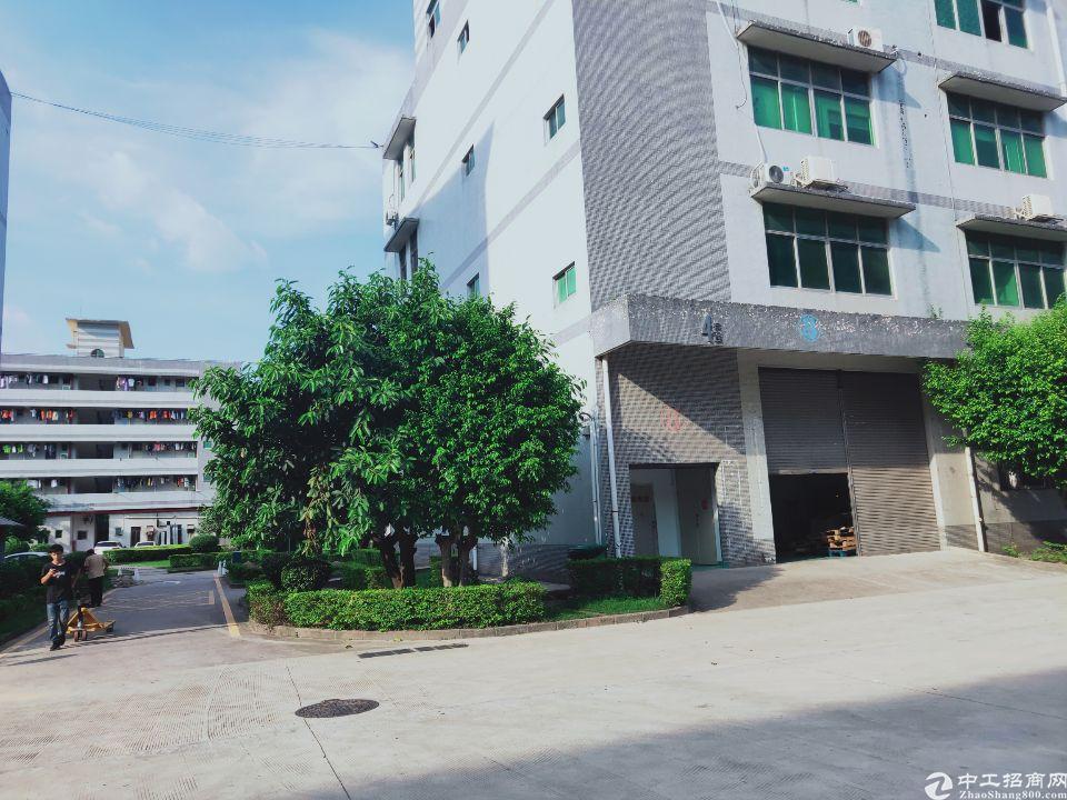 厂房出租仓库出租花园式厂房新出一楼1000平方实际面积出租