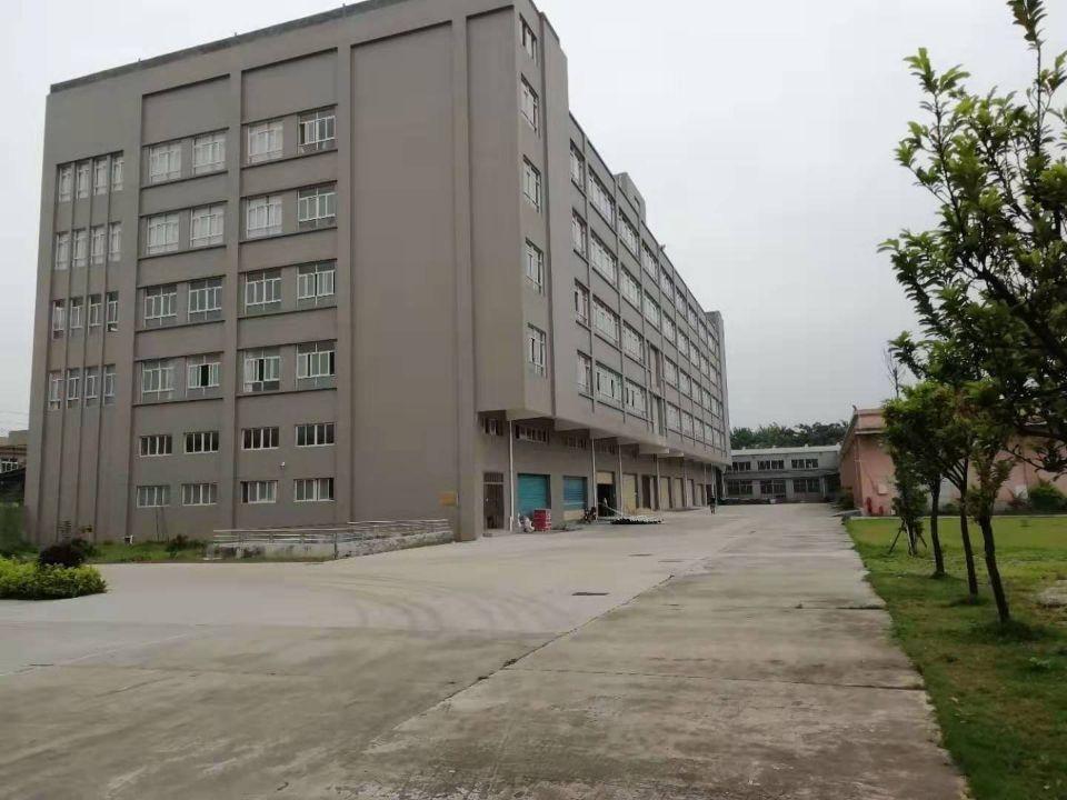 大岭山工业园区新空出独栋厂房1-5层单层面积1500平方租
