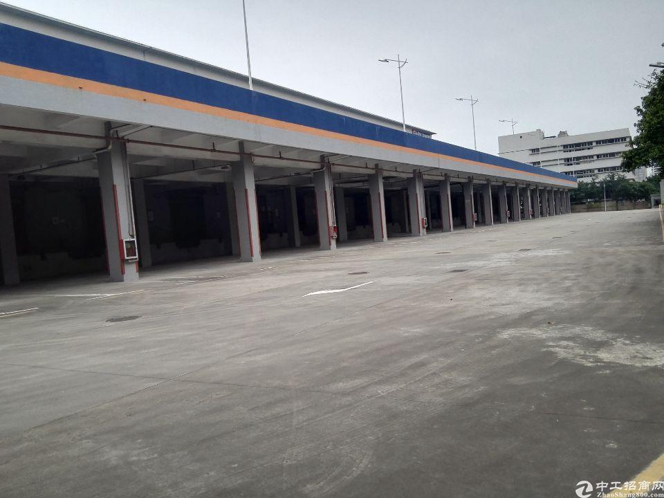 深圳市盐田港标准物流仓库17000平方米招租