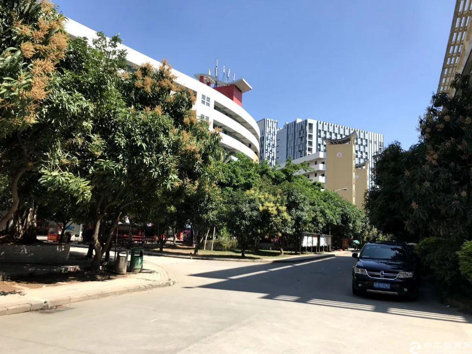 光明区标杆性大型科技园,适合厂房、写字楼、仓库、商铺、生产等