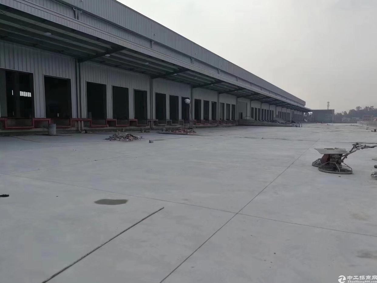 龙岗区新出滴水10米高厂房仓库45000平米,可大小分租