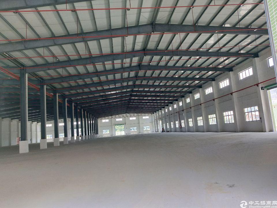 镇隆镇10500平方厂房出售