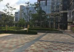 布吉主干道花园式甲级写字楼168平+285平