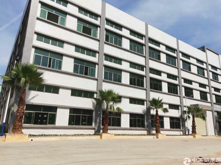 博罗县主干道旁原房东独栋标准厂房5000平招租