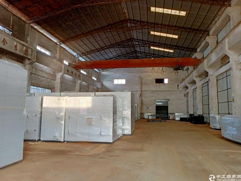新出道滘镇蔡白小独院单一层钢构厂房1600平,租金20元