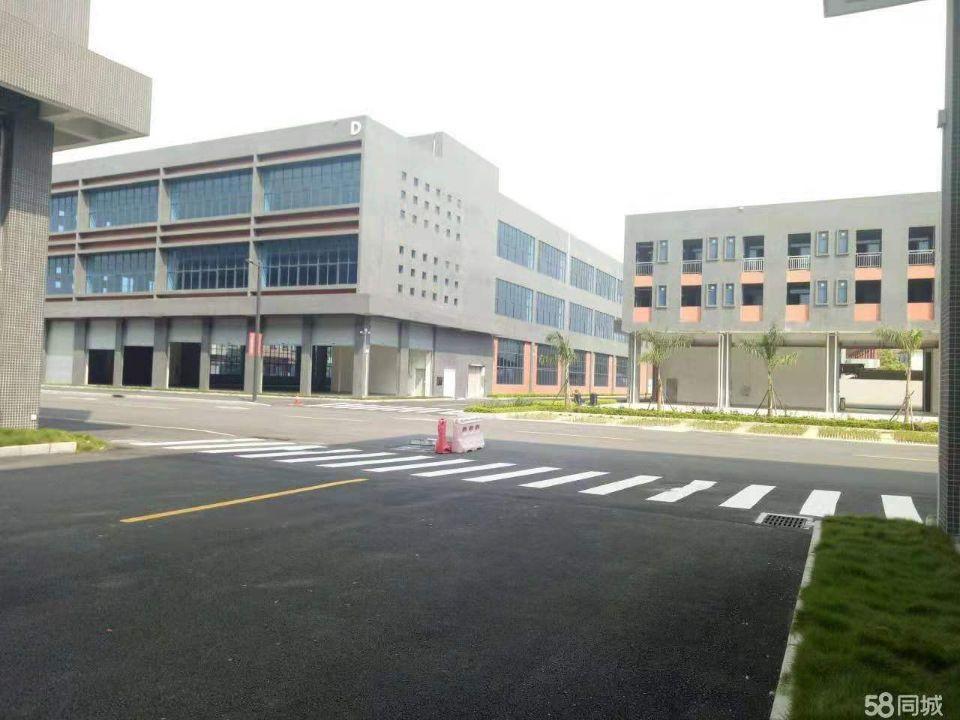 福永原房东红本厂房36800平方大小分租-图2