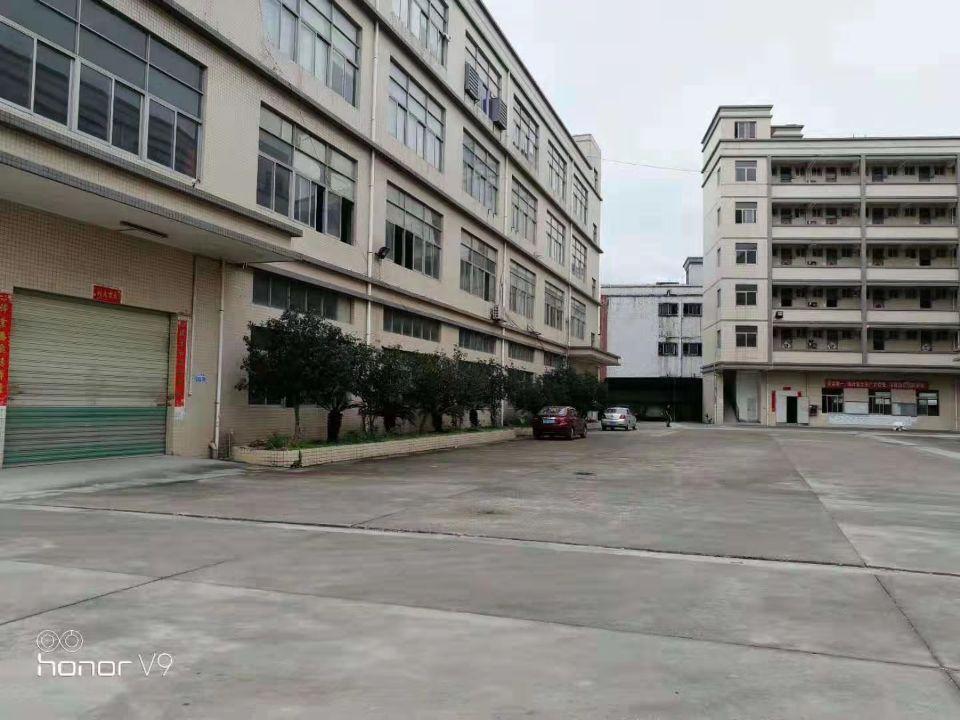 石岩镇红本独门独院厂房10000平米出租可以分租-图5