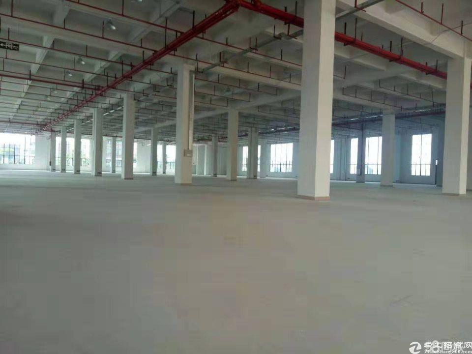 福永原房东红本厂房36800平方大小分租