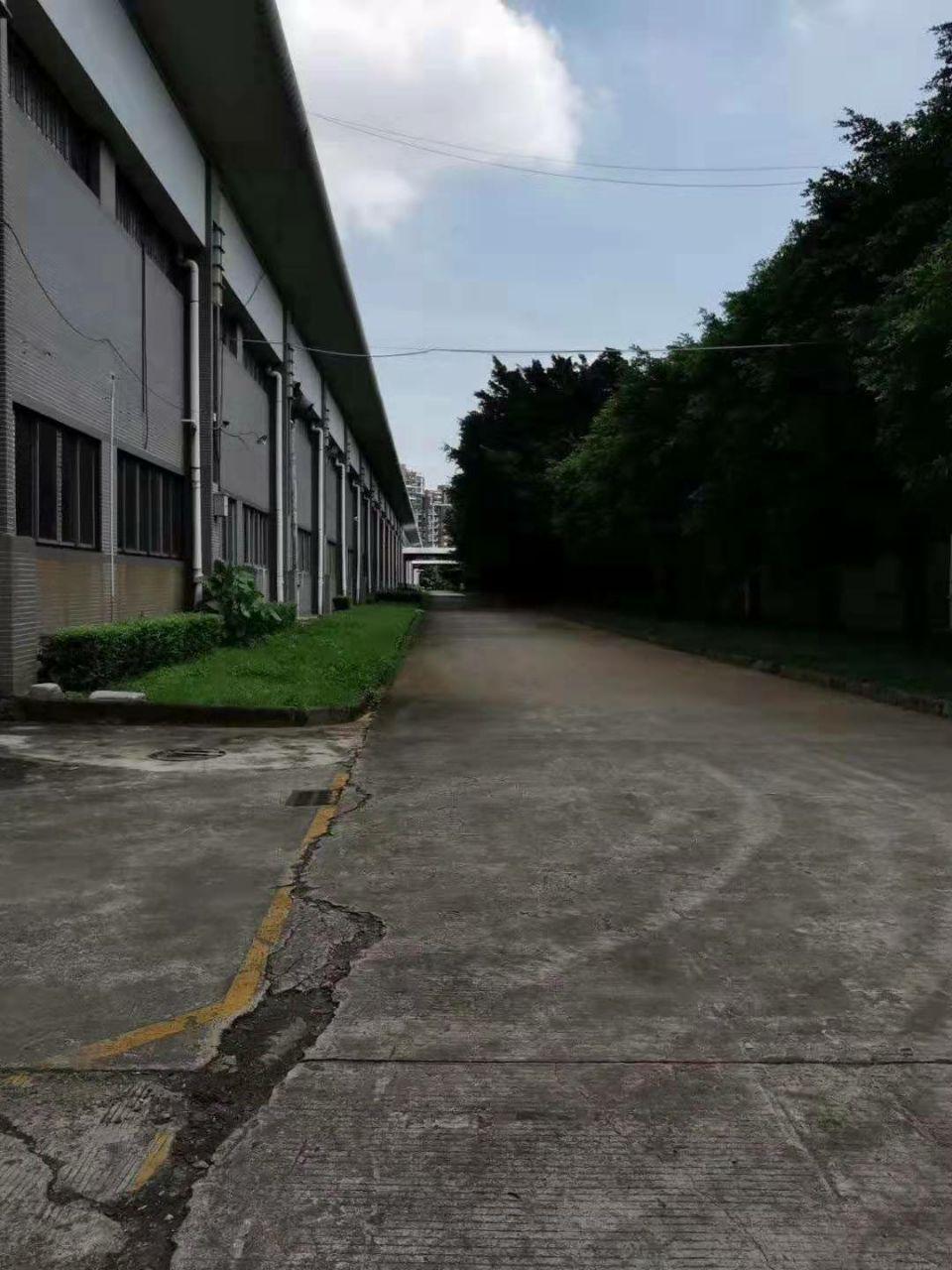 高步镇,新出标准厂房,空地超大,容易招工。