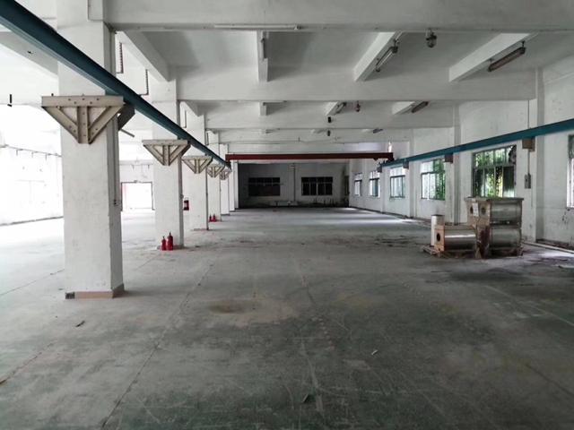 博罗园洲最新独院厂房两层4500平方出租