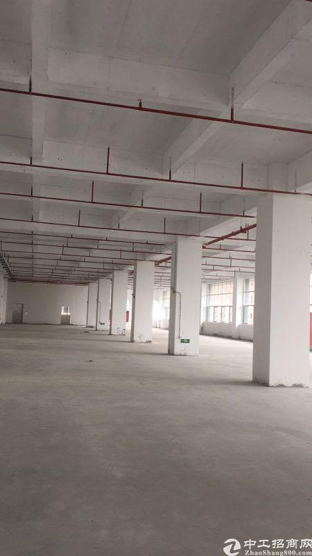 东莞常平最漂亮的国有证厂红本厂房出售