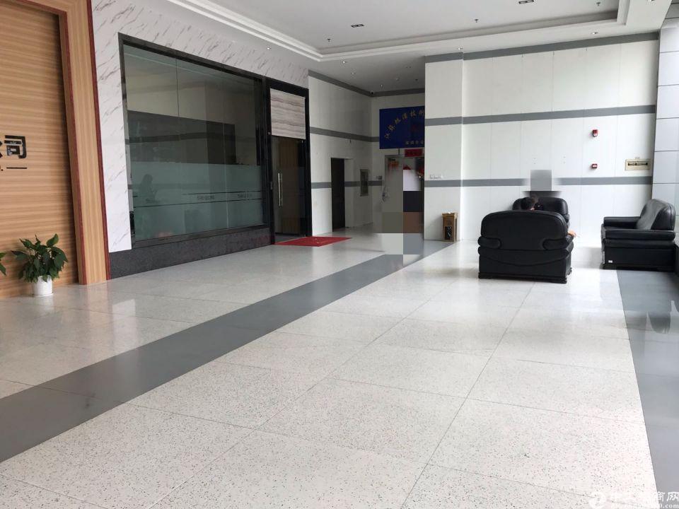 西乡三围宝安大道边索佳科技园一楼780平米精装修办公室出租