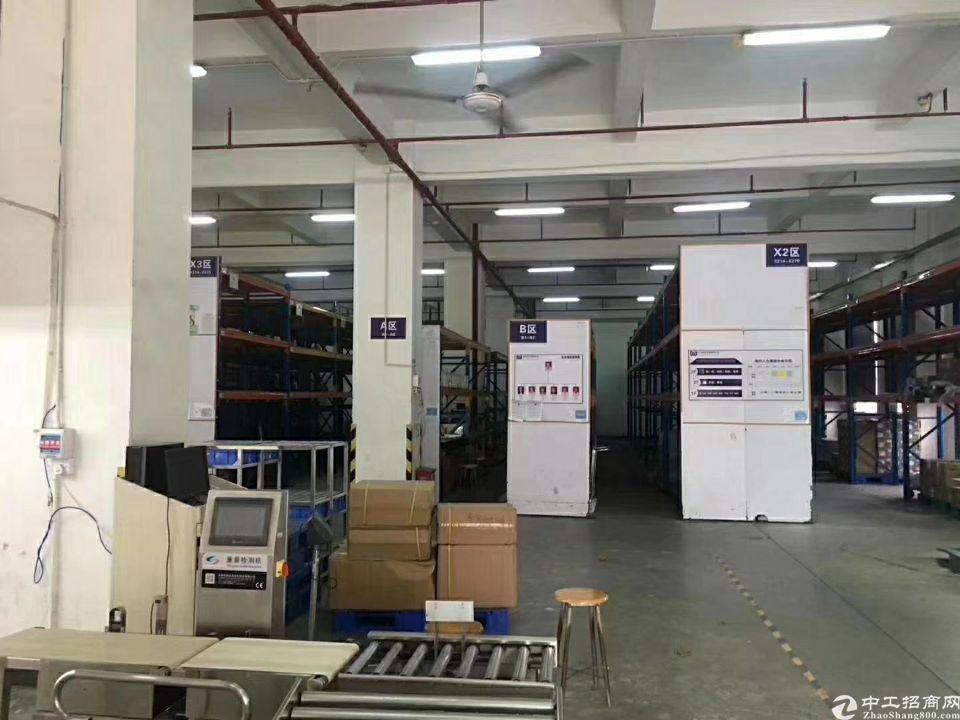 东莞大朗原房东4500平方标准独院厂房出租-图3