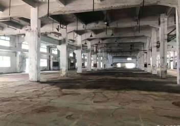 龙岗新出4s店展厅物流仓20000平招租图片8